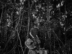 Paulo Paulino Guajajara, guardião da floresta assassinado no Maranhão