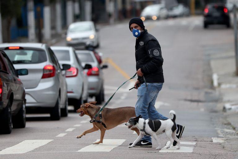 Homem passeia com cachorros em uma rua de São Paulo no último dia 17.