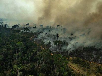 Incêndio em Alta Floresta no Estado do Pará, em 23 de agosto.