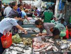 A customer selects fish from a fishmonger at a market in Phnom Penh on July 24, 2020. (Photo by TANG CHHIN Sothy / AFP)