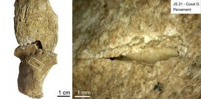 À esquerda, osso com a marca de uma lesão. À direita, observa-se a lasca lítica de um projétil ainda incrustada no osso.