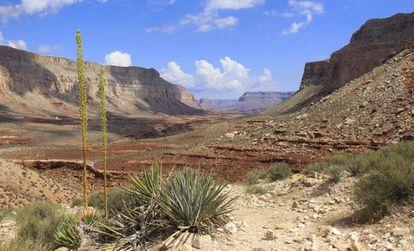 Rota para a aldeia do Supai, no cânion de Havasu (Arizona)