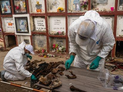 Antropólogos examinam cuidadosamente o crânio de um corpo exumado para determinar se há impactos de armas de fogo.