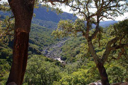 Parque Natural Los Alcornocales (Espanha).
