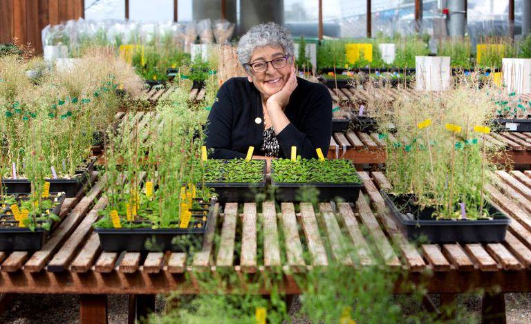 Joanne Chory, no Instituto Salk, em La Jolla, Califórnia.