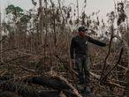 Eric Karipuna, 24, observa uma área devastada dentro da Terra Indígena Karipuna em Porto Velho.