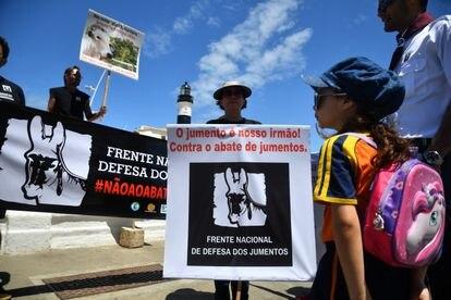 Manifestação da Frente Nacional de Defesa dos Jumentos no Farol da Barra, em Salvador.