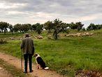 Horacio pastorea sus ovejas en la aldea de Santa Margarida da Serra, en el Alentejo portugués, el miércoles.