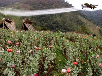 Um avião fumiga uma lavoura de El Silencio (Colômbia) com glifosato, em março de 2002.