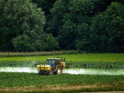 Aplicação de agrotóxico em plantação.