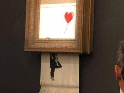O momento em que a tela de Banksy é triturada.