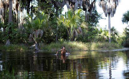 Indígena Guajajara