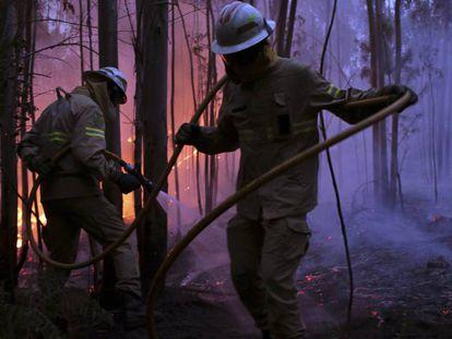 Os bombeiros trabalham na extinção do fogo perto de Avelar.
