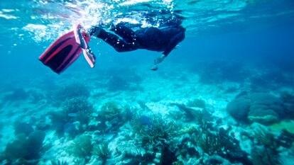 O recife de coral de Belize, uma enorme atração turística pré-pandemia.