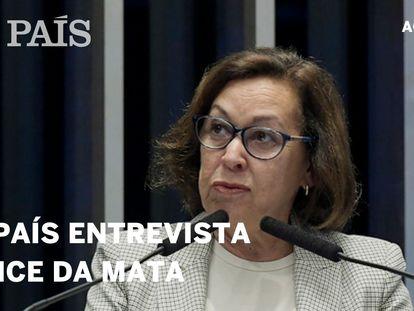 """Lídice da Mata: """"Na pandemia atingiu-se o ápice da utilização de 'fake news' no Brasil"""""""