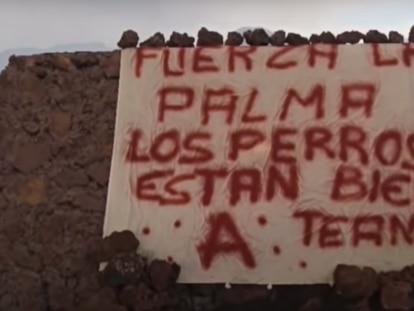 Cena do vídeo em que aparece o cartaz que anuncia o resgate dos cachorros