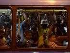 Commuters wearing protective face masks ride a bus amid the new coronavirus pandemic in Rio de Janeiro, Brazil, Thursday, June 25, 2020. Authorities say buses can operate with people standing, but limited to 2 commuters per meter square, and marks on the floor will have to be painted in order to help people to keep their distance. (AP Photo/Leo Correa)
