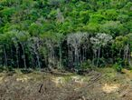 (FILES) In this file photo taken on August 07, 2020, aerial view of a deforested area close to Sinop, Mato Grosso State, Brazil. - Deforestation in the Brazilian Amazon surged again over the past year, hitting a 12-year high, according to official figures released on November 30, 2020 that drew a chorus of condemnation of President Jair Bolsonaro's government. (Photo by Florian PLAUCHEUR / AFP)