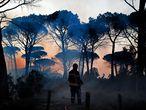 Los bomberos intentan extinguir un incendio en los alrededores de Cannet des Maures, en Francia, el 17 de agosto de 2021.
