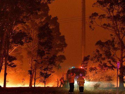 Os bombeiros tentam extinguir um incêndio em Nowra (Austrália) nesta terça-feira.