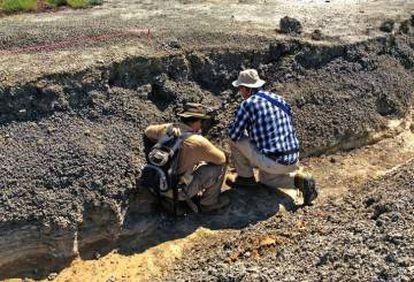 Robert DePalma (à esquerda) examina um dos estratos do sítio arqueológico de Tanis.
