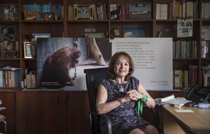 A juíza argentina Elena Liberatori, em seu gabinete.