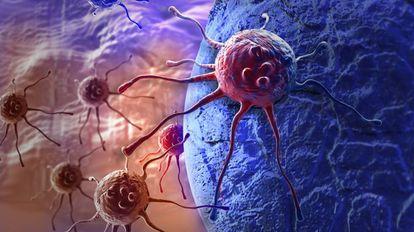 Uma célula cancerosa.