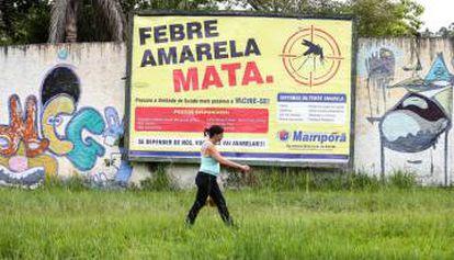 Mairiporã, localizada a 40km de São Paulo, registra grande parte dos casos de febre amarela no Estado.