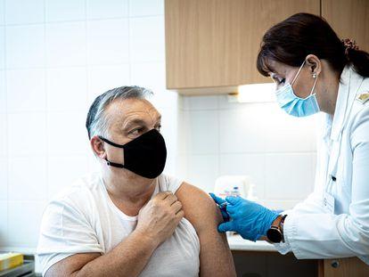 O primeiro-ministro húngaro, Viktor Orban, recebe, em 28 de fevereiro, a vacina do laboratório chinês Sinopharm, da qual seu país adquiriu cinco milhões de doses.
