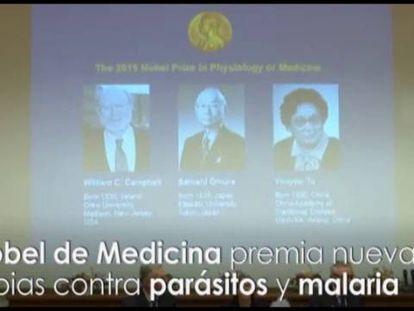 Nobel premia tratamentos contra a malária e outros parasitas