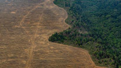 Área da Floresta Amazônica desmatada para o plantio de soja perto de Porto Velho, em 2019.