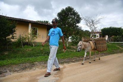 José de Jesus, de 59 anos, que pegou o jumento solto na rua e usa para trabalhar, não aceita vender.