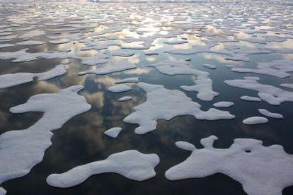 Especialistas temem as consequências do degelo no Ártico.