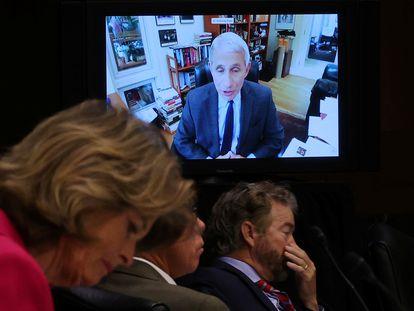 Fauci durante a videoconferência desta terça-feira em que se distanciou de Trump.