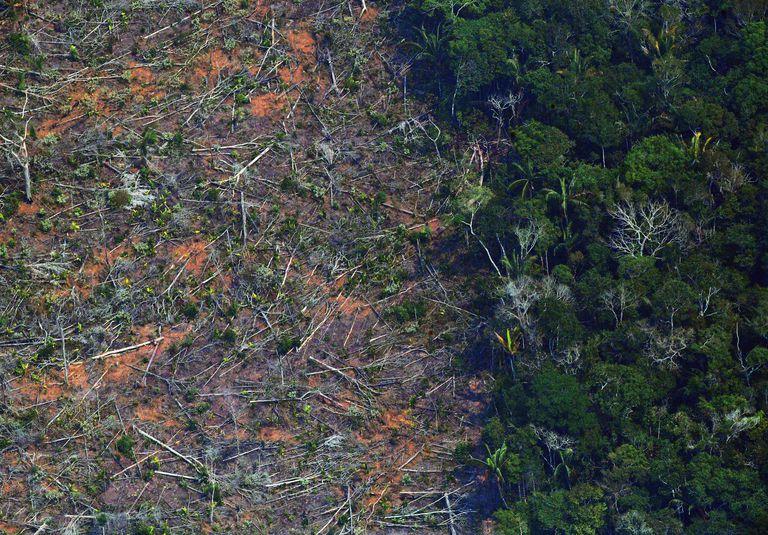 Imagem de área da Amazônia devastada a 65 km de Porto Velho, Rondônia, em agosto de 2019.