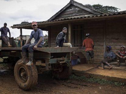 Trabalhadores rurais, provenientes de Santiago de Cuba (sudeste de Cuba), esperam o começo da jornada em uma fazenda em Güira de Melena, na província de Artemisa (oeste).