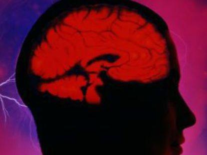 Como é o cérebro do empreendedor