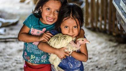 Crianças do Corredor Seco da Guatemala seguram uma galinha de pescoço pelado.