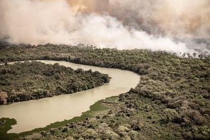 Seca recorde e queimadas recorde no Pantanal em 2020 afetam animais e até o céu de Cuiabá.