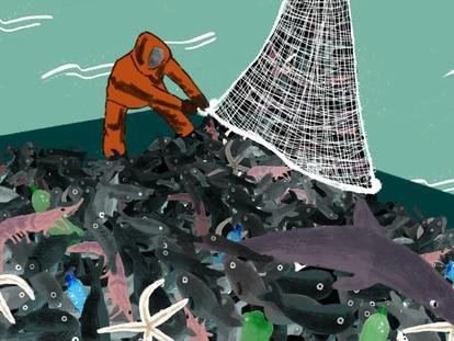 Brasil naufraga no controle da pesca de arrasto