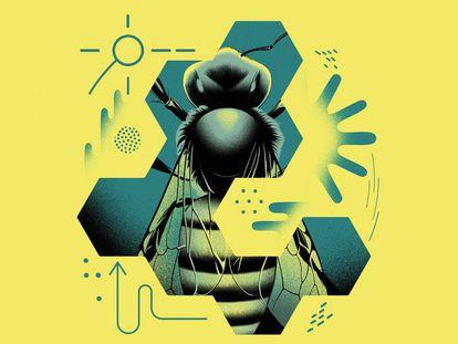 As abelhas e a Guerra Fria