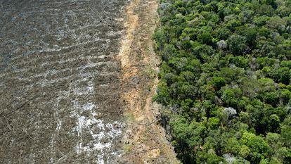 Vista aérea de floresta amazônica desmatada em Sinop, no Mato Grosso.