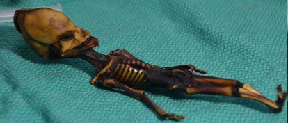 A menina foi encontrada mumificada atrás da igreja de um povoado mineiro abandonado