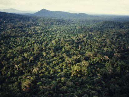 Vista aérea da Amazônia, no norte do Brasil.