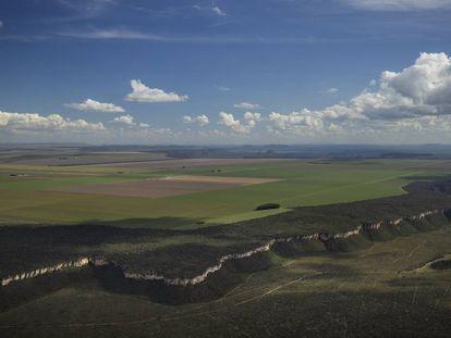 Imagem de zona desmatada para cultivo no Cerrado do Brasil ao lado de espaço de conservação em maio.