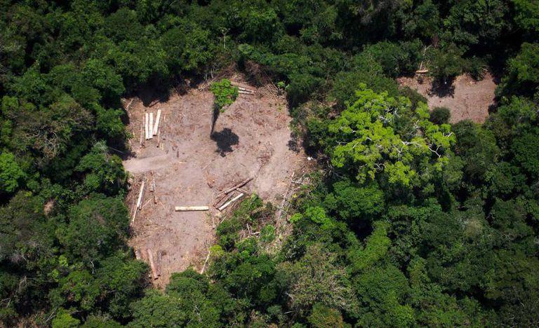 Foto aérea da Amazônia em 13 de outubro de 2014.