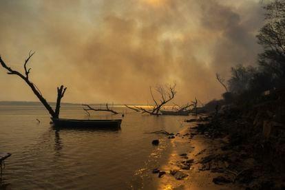 O fogo avança sobre o leito do rio no delta do Paraná. De acordo com o Greenpeace, foram registrados 3.712 focos entre janeiro e meados de maio —época do ano em que geralmente há menos incêndios.