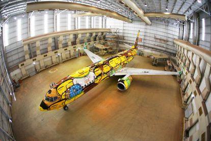 Avião pintado pelos irmãos Os Gêmeos.