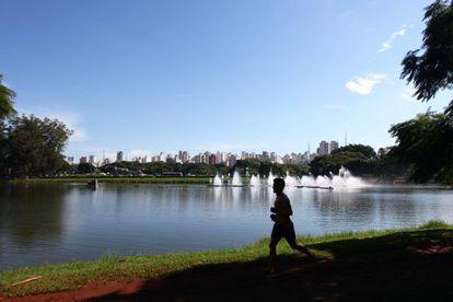 Movimentação no Parque do Ibirapuera, em São Paulo.