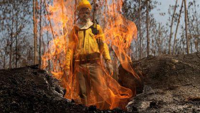 Um bombeiro observa as chamas durante os combates dos incêndios na Amazônia.